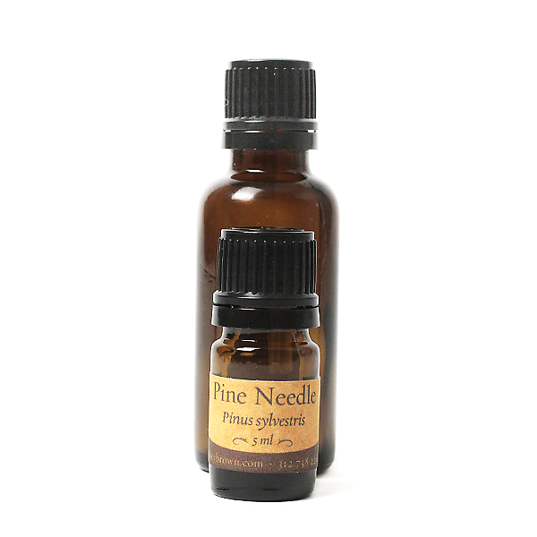 Pine needle oil uses
